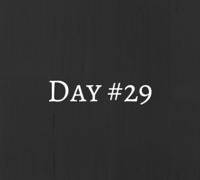 day 29